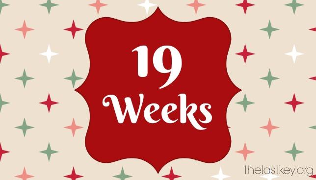 19-weeks