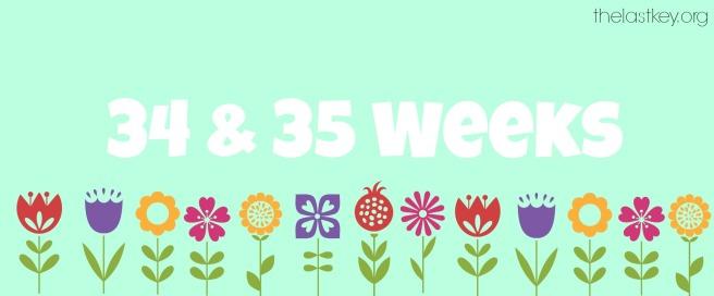 34 35 weeks